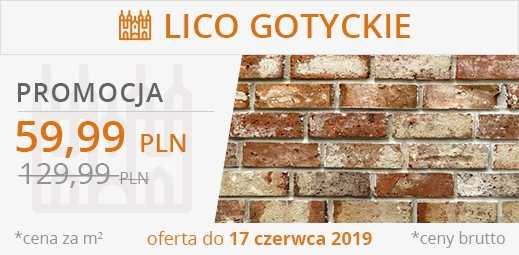 Lico gotyckie