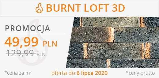Burn loft 3D